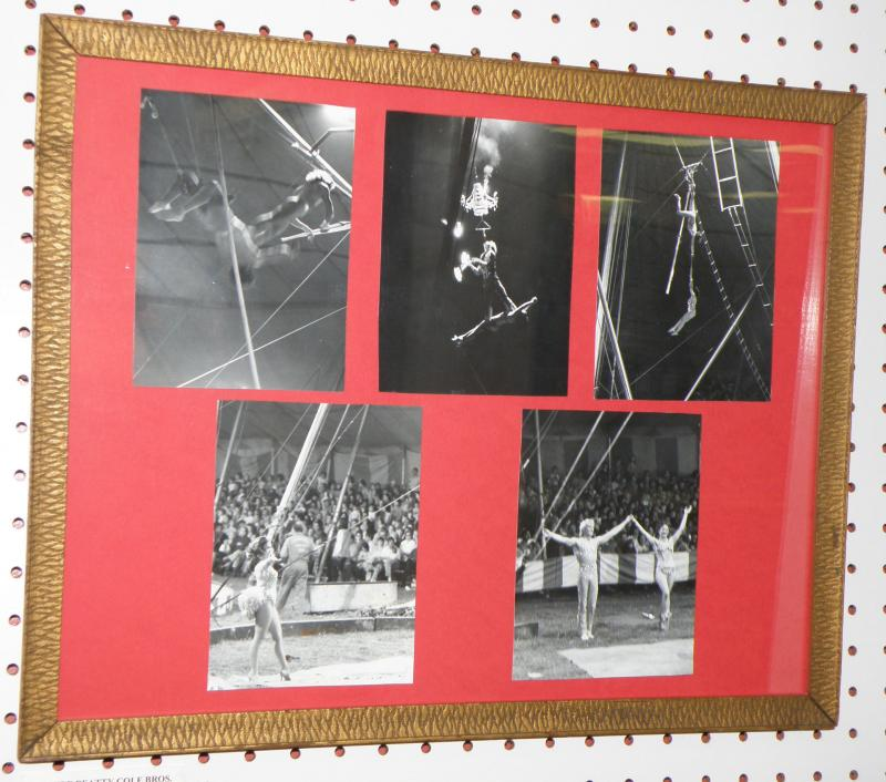 Clyde Beatty Cole Bros., Photos of Trapeze Performers  15.5 x 19